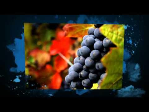 Roannais Tourisme vous souhaite une bonne année 2012...