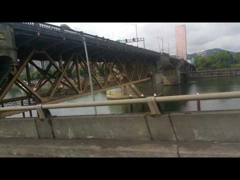 Willamette river