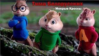 Бурундуки поют Тима Белорусских - МОКРЫЕ КРОССЫ
