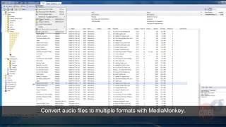 MediaMonkey Standard - Manage large media collections - Download Video Previews
