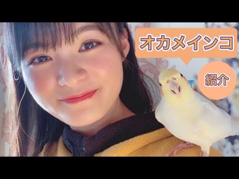 星名美津紀Official 『みづきいろ』YouTube投稿サムネイル画像