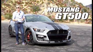 Mustang GT500 - Contacto en EEUU - Matías Antico - TN Autos