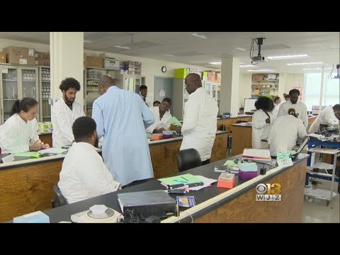 Free Job Training Program Helps Adults Get Lab Tech Jobs