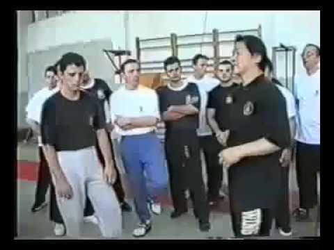 Traditional Wing Chun Kung Fu in Macedonia Day 2