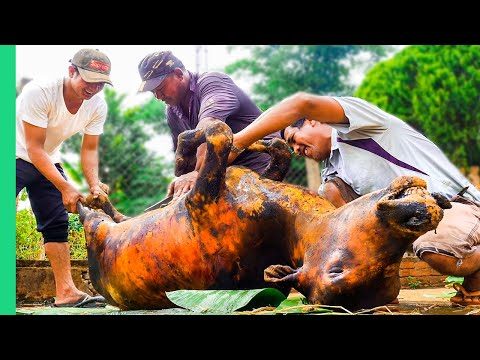 Cooking a WHOLE COW in 4 HOURS!! Vietnam Village Life!!! | S