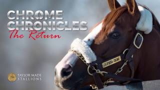 Chrome Chronicles - The Return