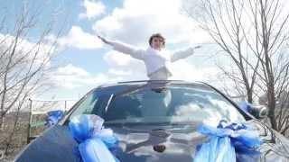 визуальные эффекты в свадебном видео (Visual Effects for wedding)