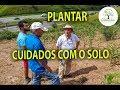 CUIDADOS COM SOLO PARA PLANTIO ,CASA SAL, 04, Plantar em Casa