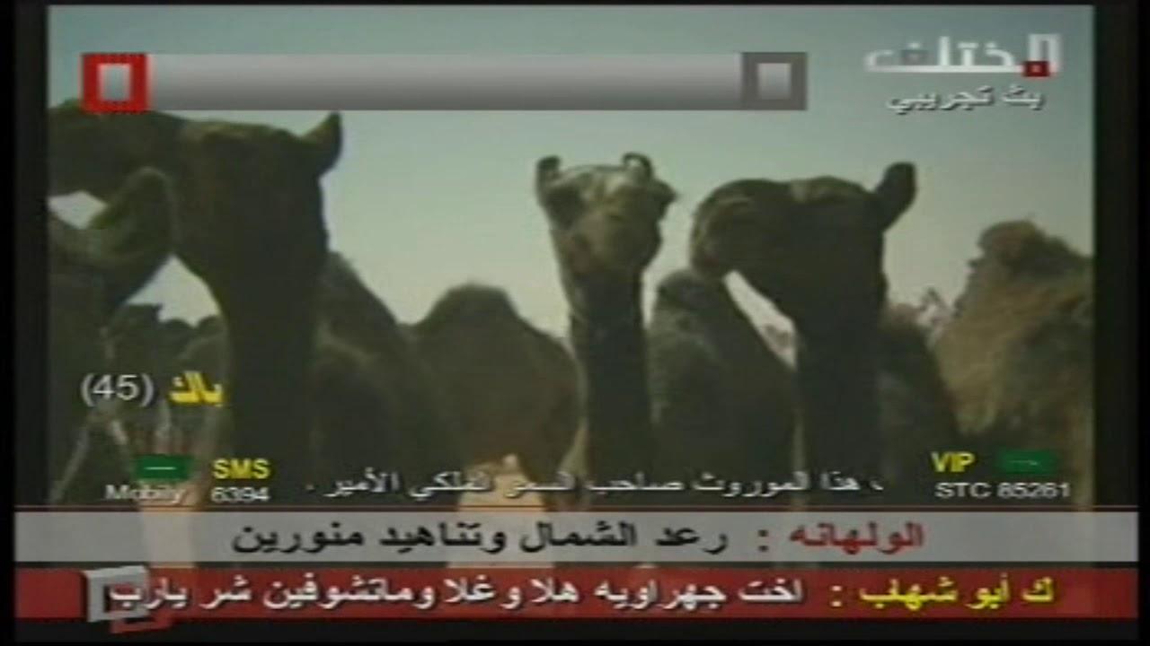 Photo of مهرجان آل عمار والحراجين لمزايين أبل الدواسر – ايفون