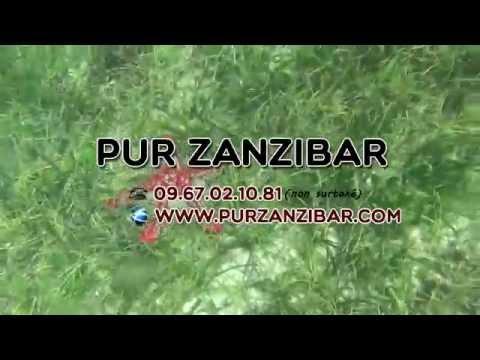 Zanzibar autrement dans des Hébergements de charme avec Pur Zanzibar