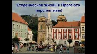 Как получить бесплатное высшее образование в Чехии