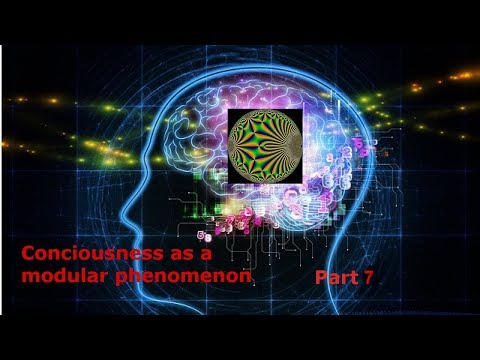Consciousness as a Modular phenomenon Part 7