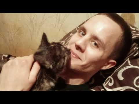 Моторошне вбивство дівчини на Харківщині: мотивом розправи став звичайний телефон