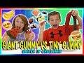 GIANT GUMMY VS TINY GUMMY SWITCH UP CHALLENGE We Are The Davises mp3