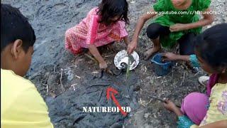 The Children are Catching Fish | Children Fancy Amazing Fish | NatureOfBD