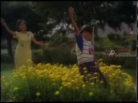 Raja Chinna Roja - Poo Poo Pol Song