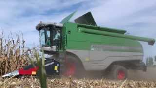 Kombajny na zber kukurice a dopravná technika