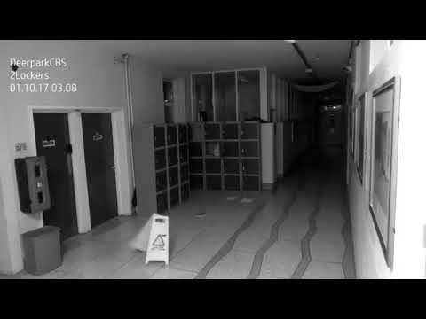 Poltergeist Video CCTV Haunted Irish School Reaction Analysis by John Razimus