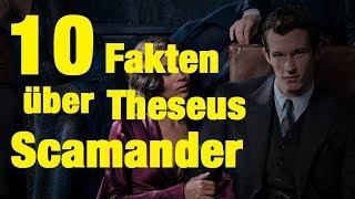 10 FAKTEN über Theseus SCAMANDER