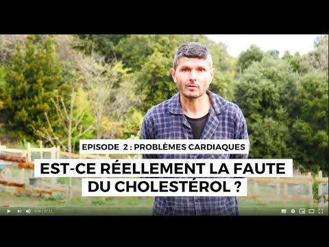 Question de coeur 2 : la faute au cholestérol ! #1