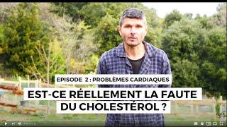 Question de coeur 2 : la faute au cholestérol !