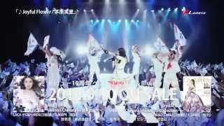 茅原実里 ベストアルバム&Music Clip集、2014年9月10日発売!