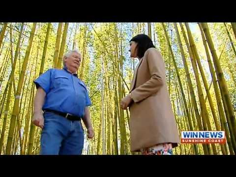Bamboo Australia » About Us