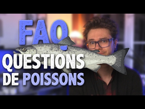 RÉCRÉ #12 : FAQ Spéciale Poissons