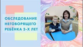 Обследование неговорящего ребёнка 3-х лет. (ОНР I уровня)