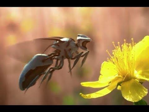 Robot Bee Endgame; Seneca Effect; Supervolcano [IAF 3/26/2018]