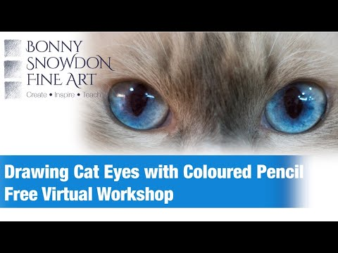 Free Virtual Workshop - Drawing Cat Eyes with Coloured Pencils