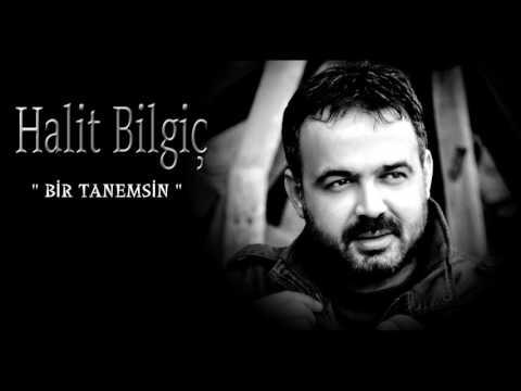 Halit Bilgiç '' Bir Tanemsin '' (Official Audıo)
