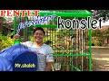 Pentet Cendet Predator Konslet By Mr Sholeh  Mp3 - Mp4 Download