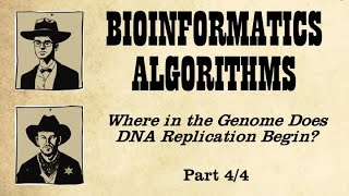 From a Biological Insight Toward an Algorithm for Finding the Replication Origin (Part 2)