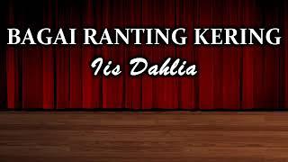 Download Karaoke dangdut Iis Dahlia bagai ranting kering no vokal +lirik 2019