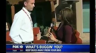 Keep Your BBQ Bug Free: Mosquito, Fly & Scorpion Control in Phoenix from Arrow Exterminators