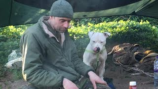 One man and his staffie wild hammock camp