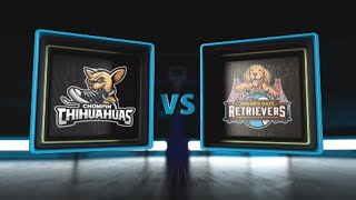3BALL USA Showcase | Day 3: Quarterfinal #2 | Chompin' Chihuahuas vs  Golden Gate Retrievers