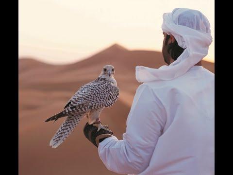 Abu Dhabi Holidays | Best At Travel