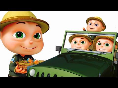 Zool Babies Series