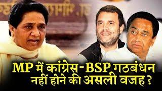 मध्य प्रदेश में क्यों नहीं हुआ कांग्रेस BSP का गठबंधन INDIA NEWS VIRAL