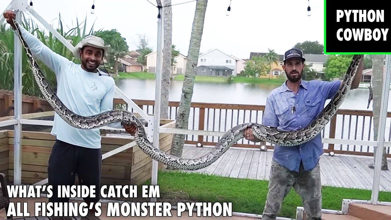 Helping Catch Em All Fishing With A Monster Python