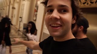 THEY FOLLOWED US HOME!! | David Dobrik