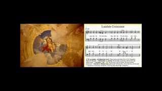 Chant de louange : Laudate Dominum de Taizé