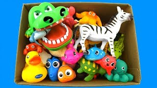 Sea Creatures For Kids and Sea Animals Names Words in English For Children - Toys For Kids