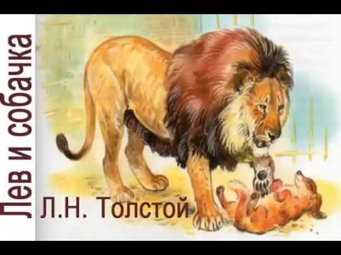 Лев и собачка Л Н Толстой Аудиорассказ