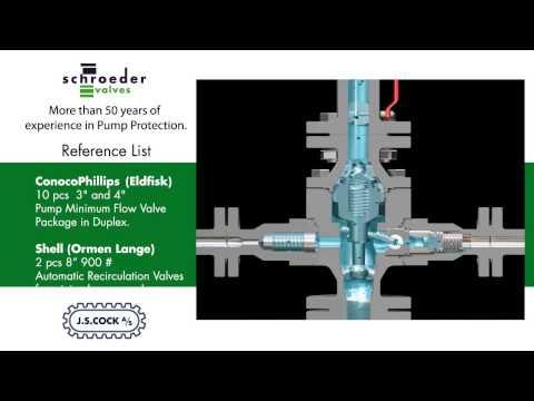 Schroeder Valve Animation 2014 YouTube
