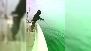 いつも釣りでお世話になってる百鬼丸のプロモーションビデオを作ってみました   これからもたくさんの魚種、大物を釣らせていただきます  ...