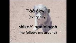 Navajo Puppy Song (Lyrics & Translation)