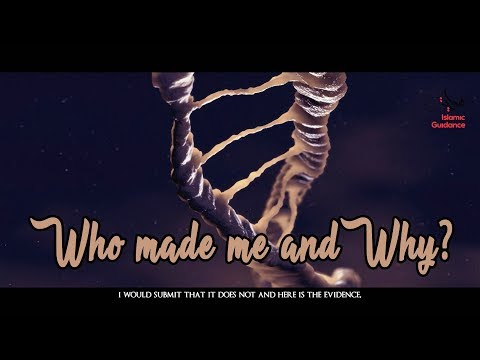 02 - Who Made Me And Why?